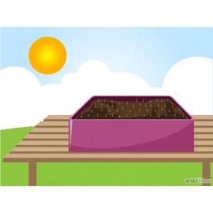 Hướng dẩn pha đất trồng rau sạch tại nhà