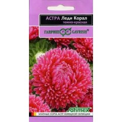 Hoa cúc đỏ aster kim cương f1 (độc quyền)